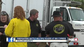 Firefighters Battle Multiple Blazes at Big Cypress Preserve - Video