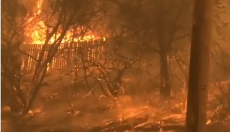 Tathra Resident Defends Home From Bushfire with Garden Hose