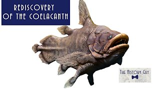 Loch Ness Outdone: Rediscovery of the Coelacanth