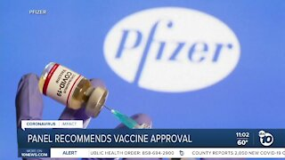 Panel recommends vaccine approval