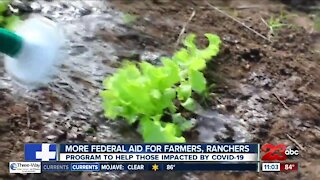 Farmers and ranchers can apply for food assistance program aid