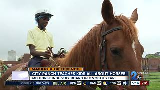 City Ranch in Baltimore teaches city students about horses, life skills - Video