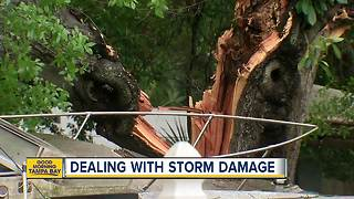Possible tornado causes damage across St. Pete - Video