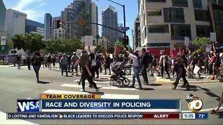Race and diversity in policing