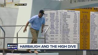 Jim Harbaugh takes on the high dive - Video