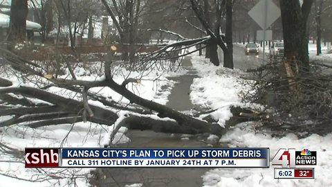 KCMO to implement service to pick up tree branches