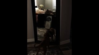 Penny sees herself in the mirror, attacks her reflection