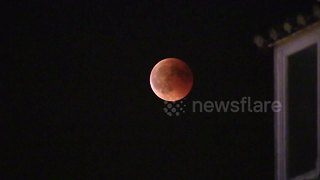 'Blood moon' seen over the night sky of Madrid - Video