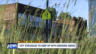 City struggles to keep up with growing grass - Video