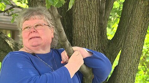 A Cleveland woman is guarding a tree on Clark Avenue against crews trying to cut it down