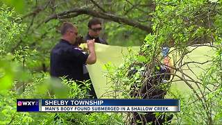 Man's body found in shallow creek in Shelby Township - Video