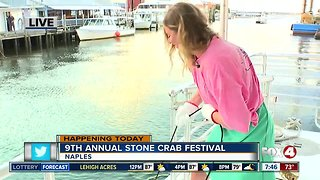 Annual Stone Crab Festival celebrates nine years in Naples - 7:30am live report