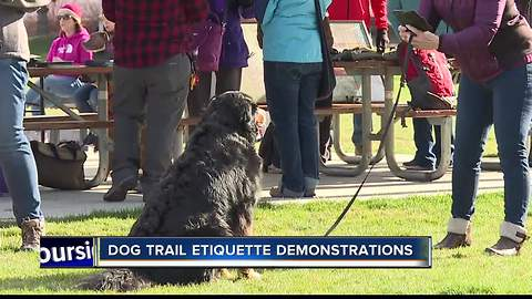 Dog trail etiquette demonstrations