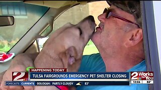 Pet owners have emotional reunions with animals after being separated by flooding concerns