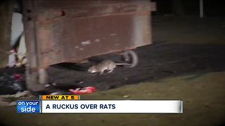 A ruckus over rats: North Pointe Apartments residents protest on-going rat problem - Video
