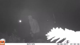 Vandalism at Christ Lutheran Church - Video