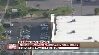 16-year-old stabbed outside Tarpon Springs Crossfit, police searching for suspect - Video