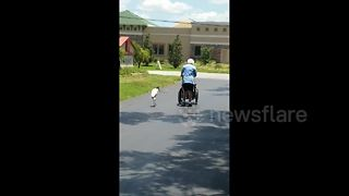 'Birds and old people - welcome to Florida' - Video