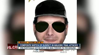 Deputies search for suspect after woman attacked on Northdale Lake Park trail - Video