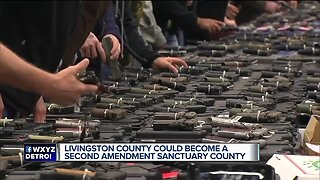 Livingston County could become a Second Amendment sanctuary county