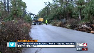 Debris Causing Drainage Issues - Video