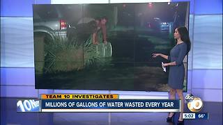 Millions of gallons of water wasted every year in San Diego - Video
