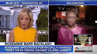 MSNBC Slammed For Bringing Joy Reid on Air to Talk About Roseanne's Controversial Tweet - Video