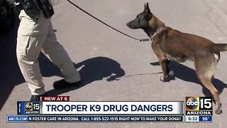 Powerful drugs raising danger for K9 officers across Valley - Video