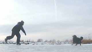 Playing With Bernese Mountain Dog On A Frozen Lake  - Video
