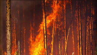 Campers Burning Human Waste Started 500-plus Acre Fire - Video