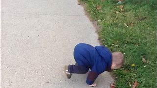 Dog Bark Scares Little Boy And He Falls On His face - Video
