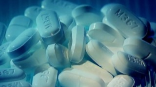 Lawmakers, community leaders discuss opioid epidemic in Palm Beach County - Video