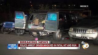 Police arrest driver involved in fatal hit-and-run - Video