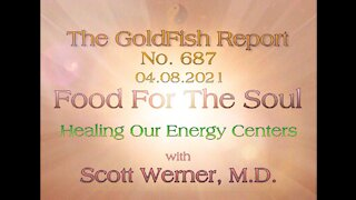 The GoldFish Report No. 687 Part 1 W/ Dr. Scott Werner: Healing our Energy Centers