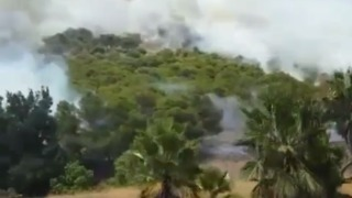 Wildfire Forces Highway to Close in Southern Spain - Video