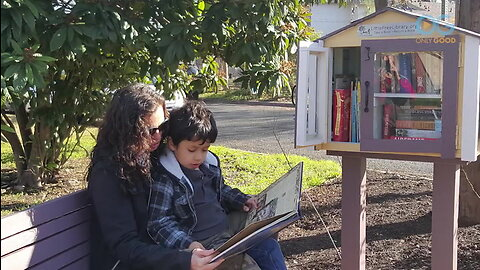 Sharing Books and Building Communities Through Little Free Libraries