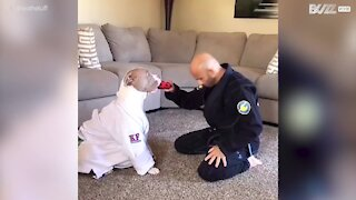 Martial arts expert trains with pit bull