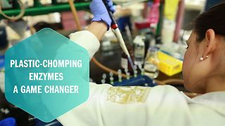 Are plastic-chomping enzymes a garbage game changer? - Video