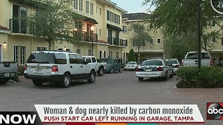 Woman and dog nearly killed by carbon monoxide - Video