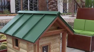 Barkitecture doghouses to benefit HomeAid Southern Nevada - Video