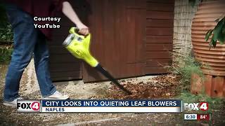 City tackles issue of noisy leaf blowers