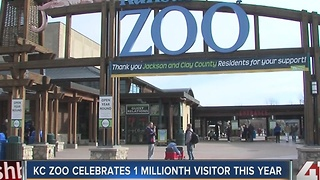 Record 1 million people visited Kansas City Zoo in 2016 - Video