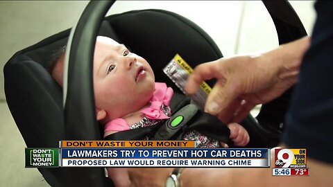 Lawmakers try to prevent hot car deaths