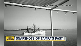 Thousands of old Tampa photos released to public - Video