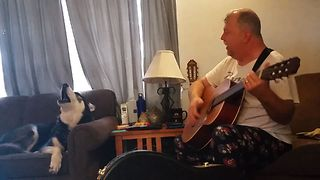 Vocal Husky Joins The Sing Along - Video