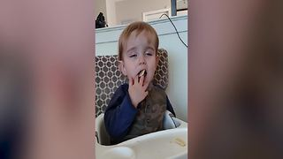 Adorable Little Boy Falls Asleep While Eating