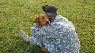 Surfing Dog Helps Empower Veterans and Kids - Video