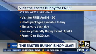 Free Easter Bunny photos!