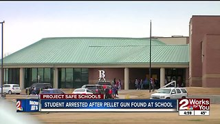 Student arrested after pellet gun found at school