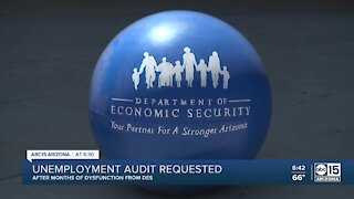 Unemployment audit requested